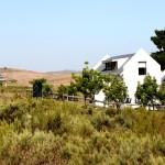 Maremmana Architecture