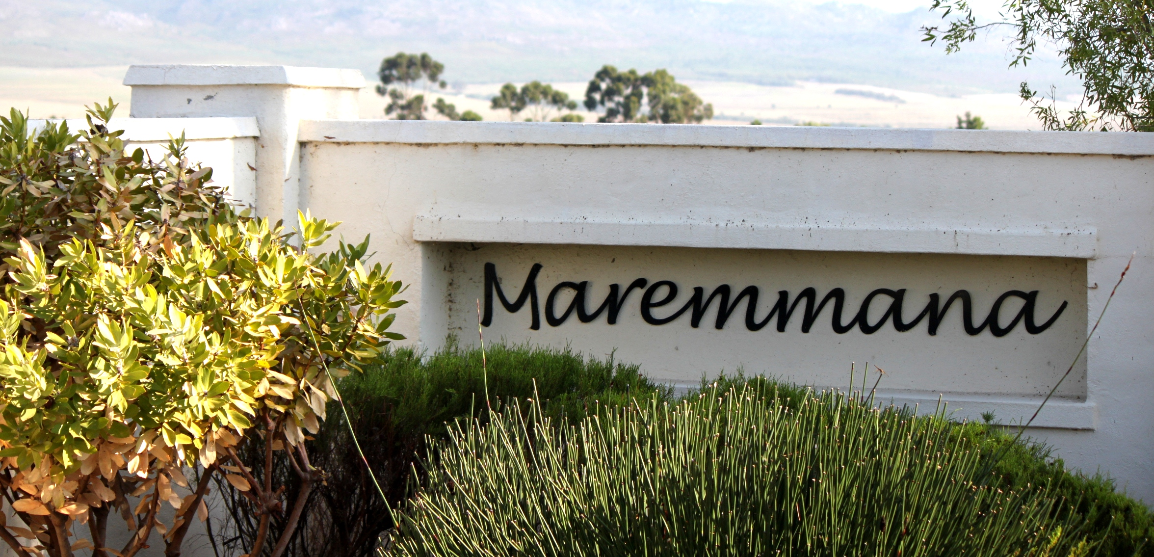 Entrance at Maremmana Estate