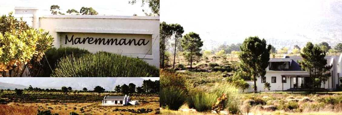 Maremmana Estate